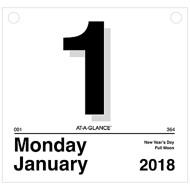 """2018 AT-A-GLANCE® """"Today Is"""" Daily Wall Calendar Refill, 12 Months, January Start, 8 1/2"""