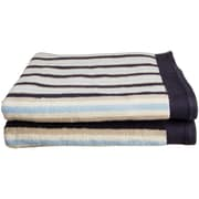 Brayden Studio Lorentz Stripes Bath Towel (Set of 2); Blue