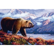 ReflectiveArt 'Grizzly' Graphic Art Print on Museum Wrapped Canvas; 12'' H x 18'' W x 1'' D