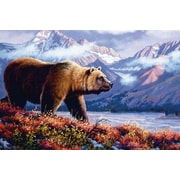ReflectiveArt 'Grizzly' Graphic Art Print on Museum Wrapped Canvas; 16'' H x 24'' W x 1'' D
