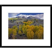 Global Gallery 'Fall Colors At Chair Mountain, Colorado' Framed Photographic Print