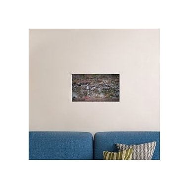 Naxart 'Mountain River' Photographic Print on Canvas; 13'' H x 22'' W x 1.5'' D