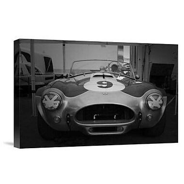 Naxart '427 Cobra' Photographic Print on Canvas; 12'' H x 18'' W x 1.5'' D