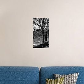 Naxart 'Burned Trees' Photographic Print on Canvas; 40'' H x 22'' W x 1.5'' D