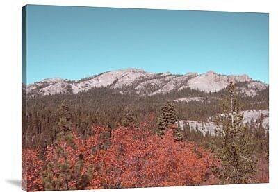 Naxart 'Sierra Nevada Mountains' Photographic Print on Canvas; 30'' H x 40'' W x 1.5'' D