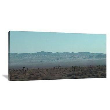 Naxart 'Joshua Trees' Photographic Print on Canvas; 18'' H x 36'' W x 1.5'' D