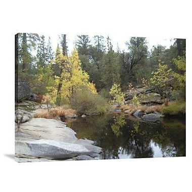 Naxart 'Lake in the Forest' Photographic Print on Canvas; 30'' H x 40'' W x 1.5'' D
