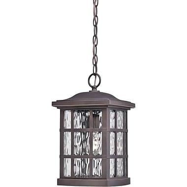 Brayden Studio Lockett 1-Light Outdoor Hanging Lantern