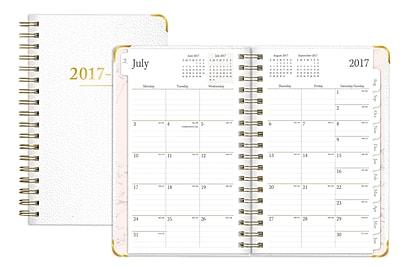 2017-2018 Blue Sky 8.5x11 Weekly/Monthly Planner, Aurora (100191)