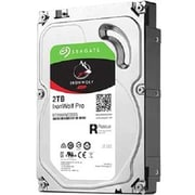 DNPSeagate IronWolf Pro ST2000NE0025 2 TB 3.5 inch Internal Hard Drive (ST2000NE0025 20PK) by