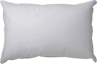 Alwyn Home 100pct Down Pillow; Standard