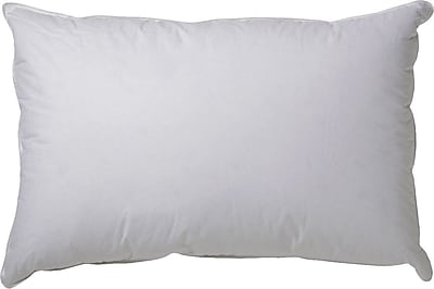Alwyn Home 100pct Down Pillow (Set of 2); Standard