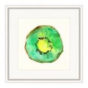 Melissa Van Hise 'Kiwi' Framed Painting Print