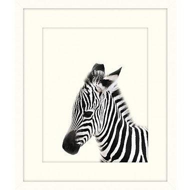 Melissa Van Hise 'Little Zebra' Framed Graphic Art Print