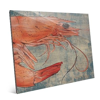 Click Wall Art 'Big Shrimp Looking Right Nautical' Painting Print ; 20'' H x 24'' W x 1'' D