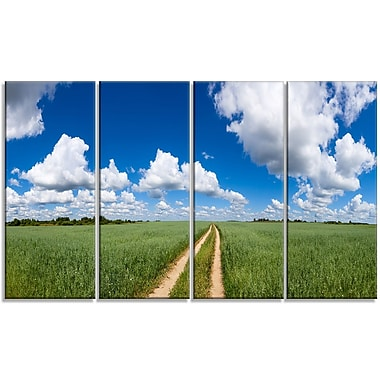 DesignArt 'Path in Bright Summer Panorama' Photographic Print Multi-Piece Image on Canvas