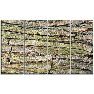 DesignArt 'Thick Tree Skin Close-Up' Photographic Print Multi-Piece Image on Canvas