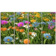 DesignArt 'Different Color Flowers in Field' Photographic Print Multi-Piece Image on Canvas