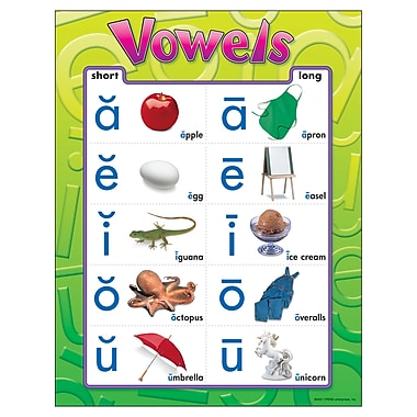 Trend Enterprises® Vowels Learning Chart