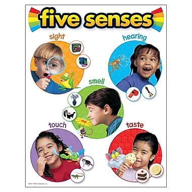Trend Enterprises® Five Senses Learning Chart
