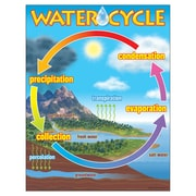 Trend Enterprises® The Water Cycle Learning Chart