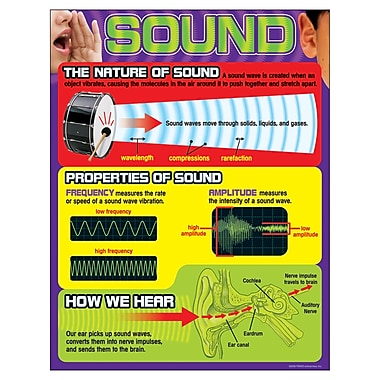 Trend Enterprises® Sound Learning Chart, Grades 4th - 9th