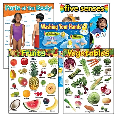 Trend Enterprises® Healthy Living Learning Charts Combo Pack, Grade PreK - 2nd (T-38980)