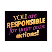 Trend Enterprises® ARGUS® Poster, You Are Responsible For Your Own Actions!