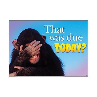 Trend Enterprises® ARGUS® Poster, That Was Due Today