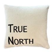 Oreiller de plumes, True North, noir, 7,5 x 22 x 22 po, paq./2