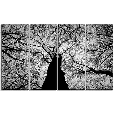 DesignArt 'Hoto of Winter Branches' Photographic Print Multi-Piece Image on Canvas