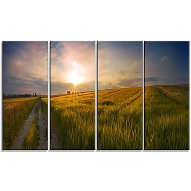 DesignArt 'Sunset in Field of Grain Panorama' Photographic Print Multi-Piece Image on Canvas
