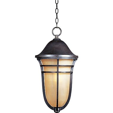 Loon Peak Portola 1-Light Outdoor Hanging Lantern