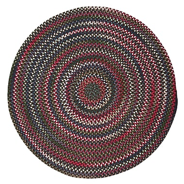 Loon Peak Roxborough Park Saddle Brown Area Rug; Round 6'