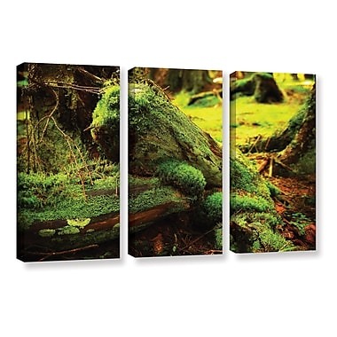Red Barrel Studio 'Into The Greens' 3 Piece Photographic Print on Wrapped Canvas Set