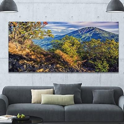 DesignArt 'Merbabu Volcano in Java' Photographic Print on Wrapped Canvas; 28'' H x 60'' W x 1.5'' D