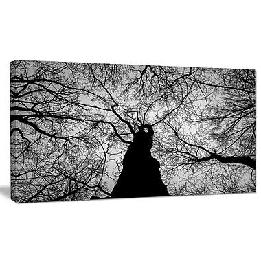 DesignArt 'Hoto of Winter Branches' Photographic Print on Wrapped Canvas; 16'' H x 32'' W x 1'' D