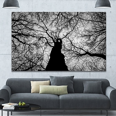 DesignArt 'Hoto of Winter Branches' Photographic Print on Wrapped Canvas; 40'' H x 60'' W x 1.5'' D