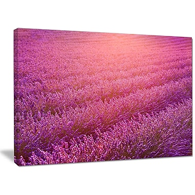 DesignArt 'Lavender Field and Ray of Light' Photographic Print on Wrapped Canvas