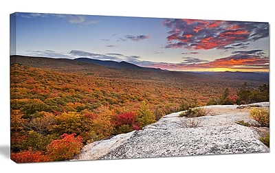 DesignArt 'Endless Forests in Fall Foliage' Photographic Print on Wrapped Canvas