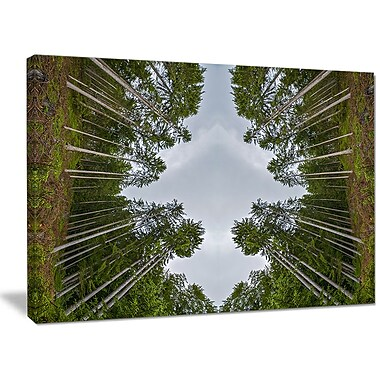DesignArt 'Circle Composition of Coniferous Trees' Photographic Print on Wrapped Canvas