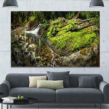 DesignArt 'Creek Moss and Rocks Panorama' Photographic Print on Wrapped Canvas
