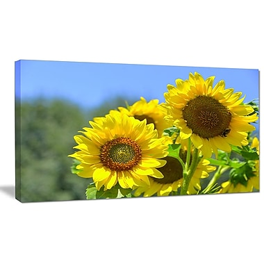 DesignArt 'Beautiful Sunflowers View' Photographic Print on Wrapped Canvas; 12'' H x 20'' W x 1'' D