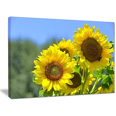 DesignArt 'Beautiful Sunflowers View' Photographic Print on Wrapped Canvas; 30'' H x 40'' W x 1'' D