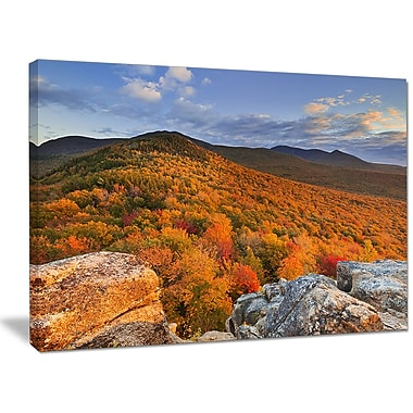 DesignArt 'Endless Forests in the Fall Foliage' Photographic Print on Wrapped Canvas