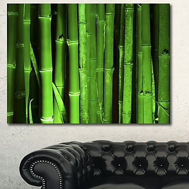 DesignArt 'Green Bamboo Forest' Photographic Print on Wrapped Canvas; 30'' H x 40'' W x 1'' D
