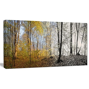 DesignArt 'Yellow Morning in Forest Panorama' Photographic Print on Wrapped Canvas