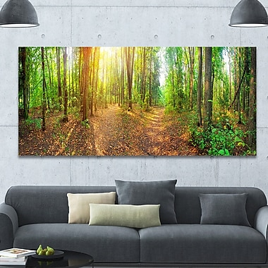DesignArt 'Dense Forest Panorama' Photographic Print on Wrapped Canvas; 28'' H x 60'' W x 1.5'' D