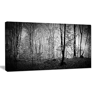 DesignArt 'Beautiful Forest Morning Panorama' Photographic Print on Wrapped Canvas