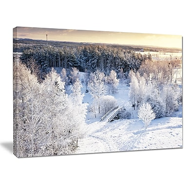 DesignArt 'Beautiful Winter Panorama' Photographic Print on Wrapped Canvas; 30'' H x 40'' W x 1'' D